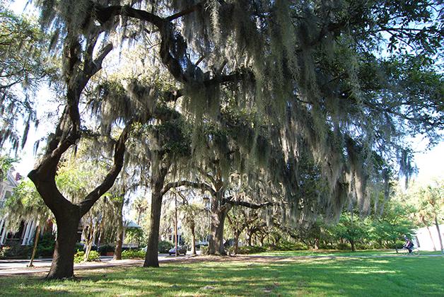 Parque Forsyth en Savannah, Georgia. Foto © Patrick Mreyen
