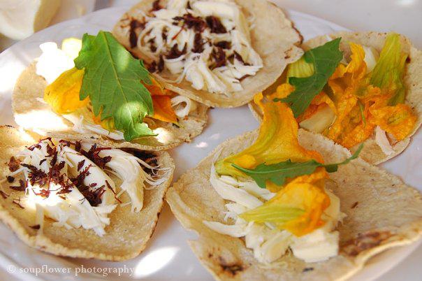 Chapulines en tacos, hechos por la fotógrafa en una clase de cocina durante su viaje a Oaxaca. © Soupflower Photography