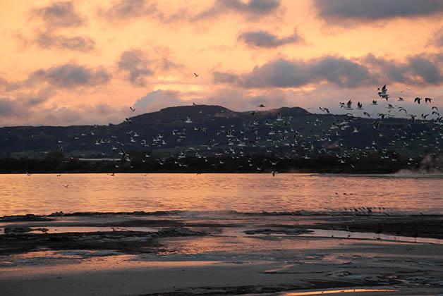 Atardecer en el lago Rotorua. Foto © Patrick Mreyen
