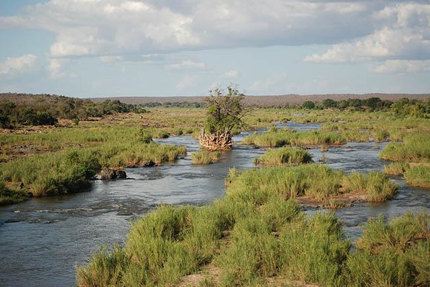 Parque Nacional Kruger en Sudáfrica. Foto © Patrick Mreyen