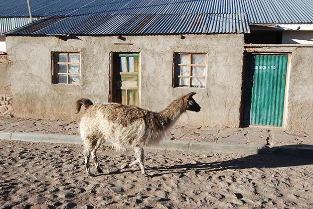 Pueblos solitarios. Foto © Silvia Lucero