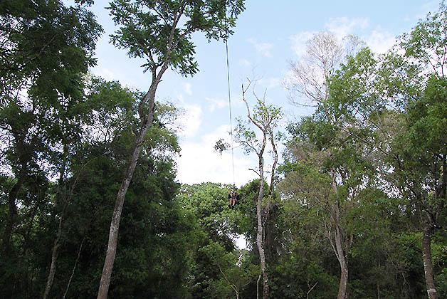 Canopy en Iguazú. Foto © Silvia Lucero