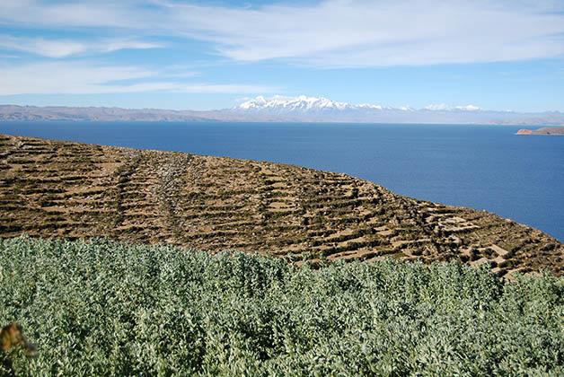 Paisajes de la Isla del Sol. Foto © Silvia Lucero