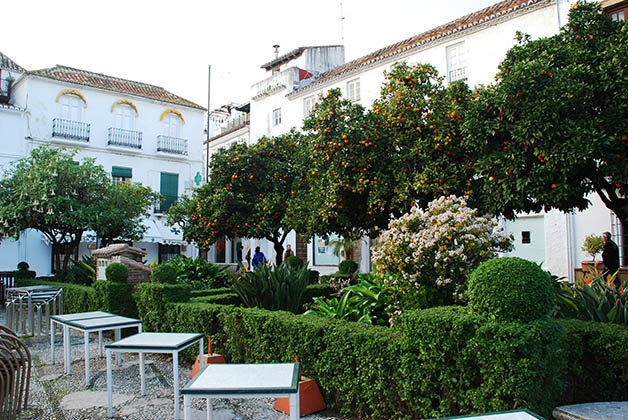 Plaza de los Naranjos. Foto © Patrick Mreyen