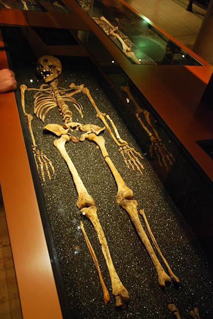 Esqueleto de uno de los tripulantes. Foto © Patrick Mreyen