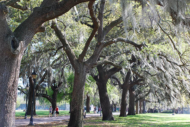 Parque Forsyt en Savannah. Foto © Silvia Lucero