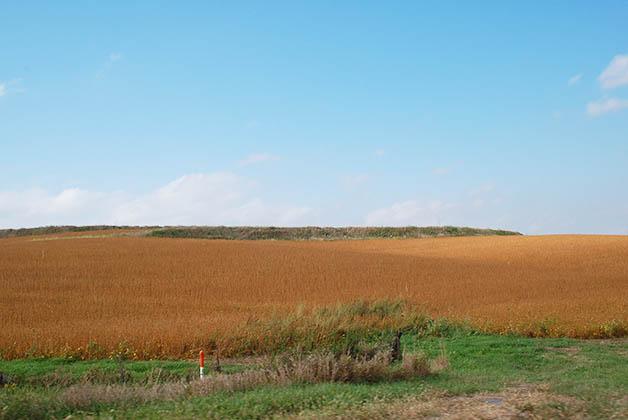 Esto me venía a la mente cuando pensaba en Nebraska. Foto © Silvia Lucero