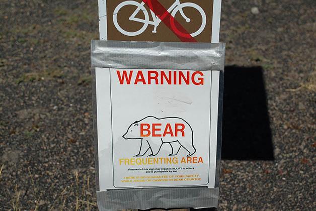 En el parque te dan una guía para saber qué hacer si te encuentras con un oso. Foto © Patrick Mreyen