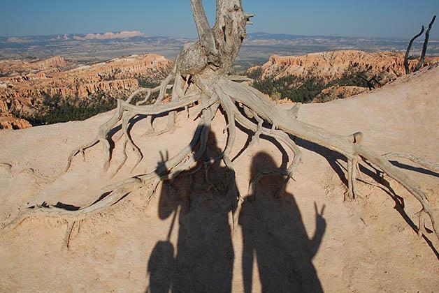 Nuestras sombras viajeras. Foto © Patrick Mreyen