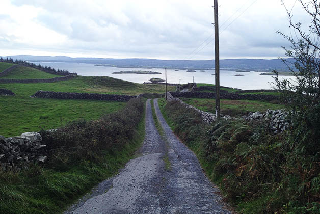 En carretera en Irlanda. Foto © Silvia Lucero