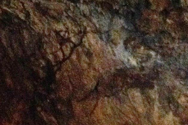 Arte rupestre en la Cueva El Castillo. Foto © Patrick Mreyen
