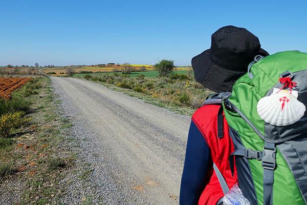 Uno de mis sueños para el 2016, hacer el Camino de Santiago.