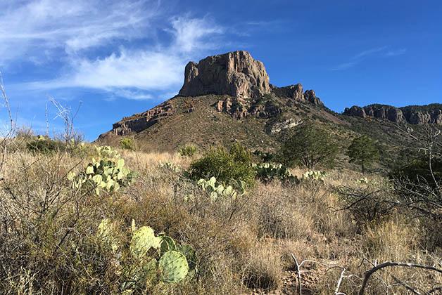 El paisaje es muy bonito con los cactus. Foto © Silvia Lucero