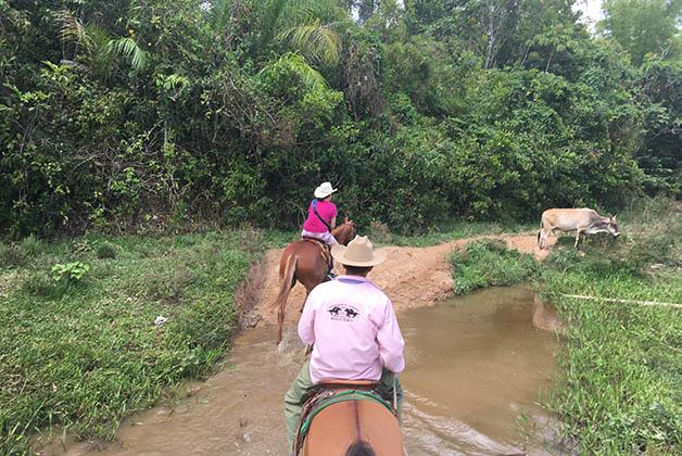 Viñales se tiene que recorrer a caballo. Foto © Patrick Mreyen